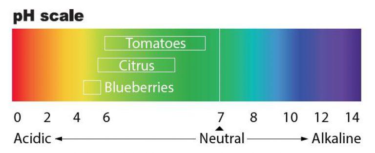 pH-scale-768x314